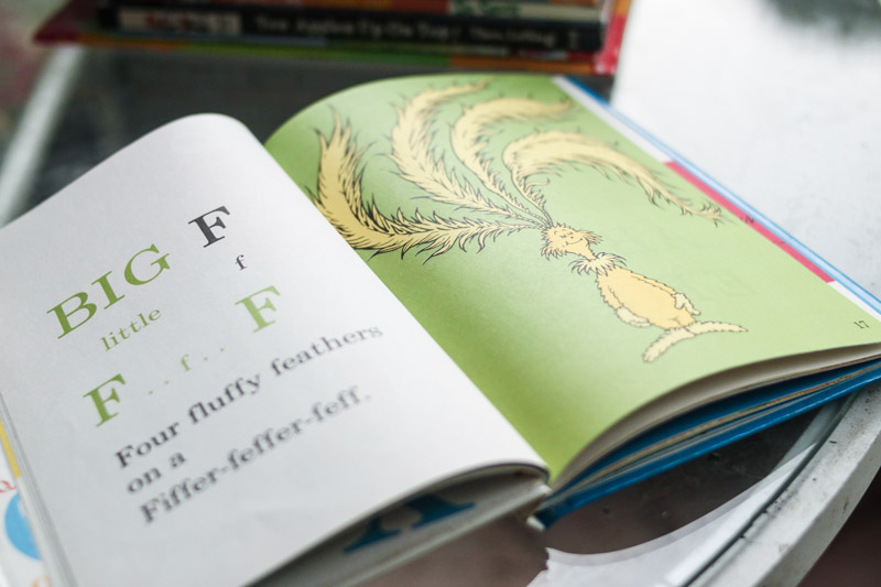 Dr Seuss: 10 Picture Books Ideal for Early Learning Pre-K and Kindergarten Education at Home - Midkid Mama