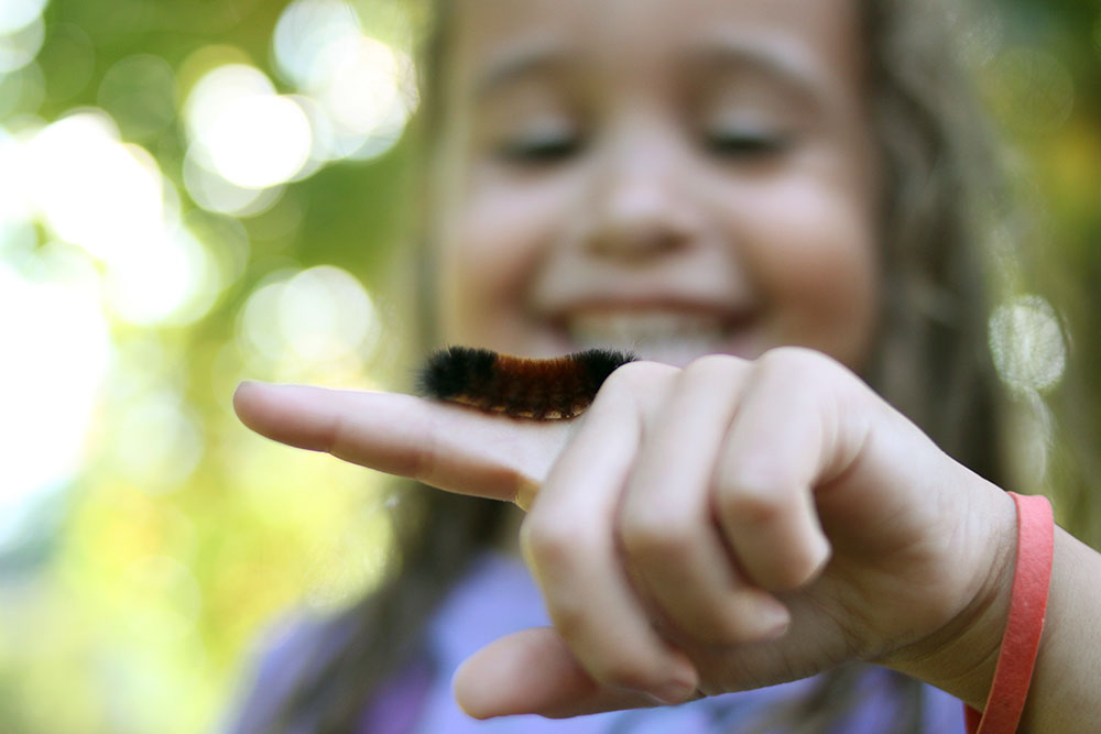 Finding bugs or other items outside with your kids for full collections and exploration